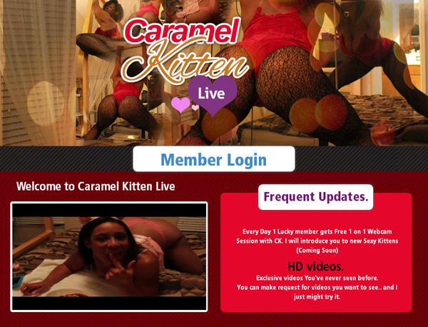 Caramel Kitten Live 암호