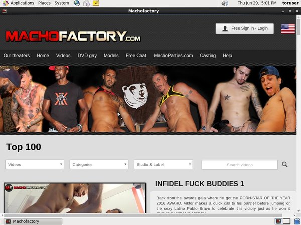 Macho Factory Recent