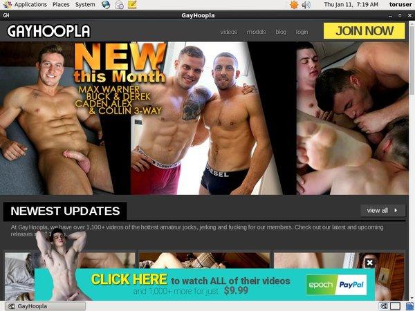 Password To Gayhoopla.com